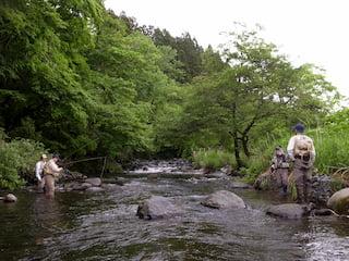 岳川の渓相