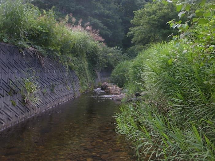 野尻川の小淵