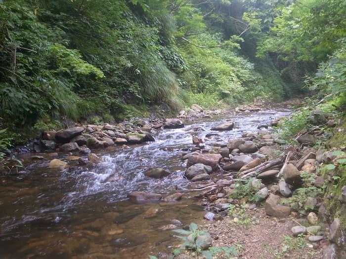 野尻川のチャラ瀬