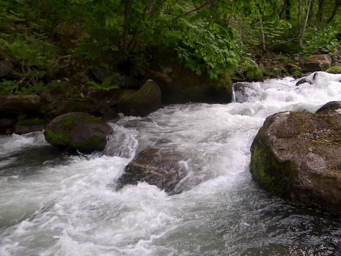 激しい流れの川