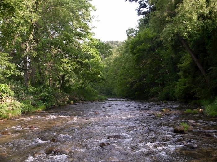 どこまでも続く大樽川のチャラ瀬