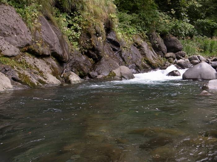 増水気味の日向川