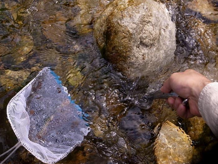 石をスコップでひっくり返す