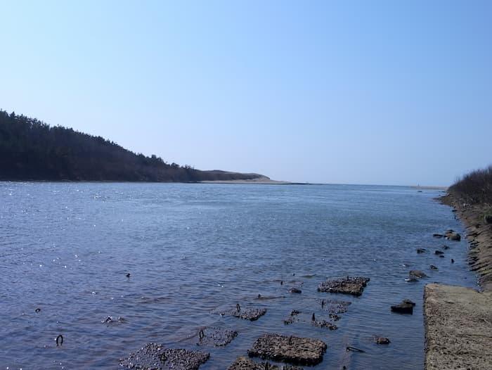 赤川河口と日本海