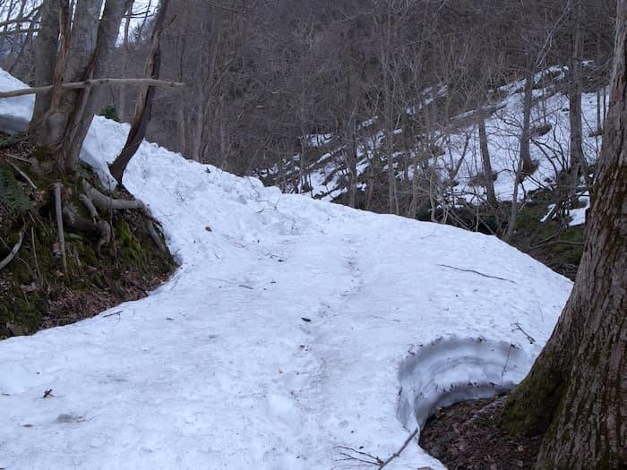 残雪の残る山道