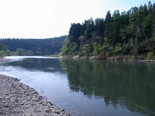 鮭川の中流域