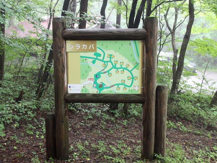 南蔵王野営場シラカバの案内板