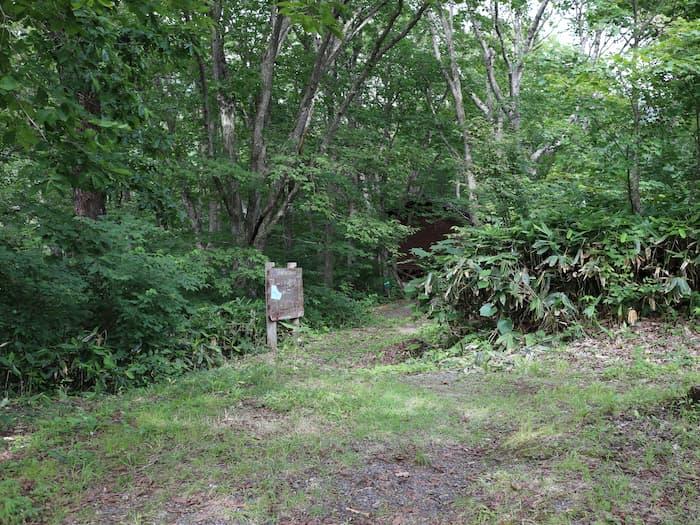野鳥観察小屋への道