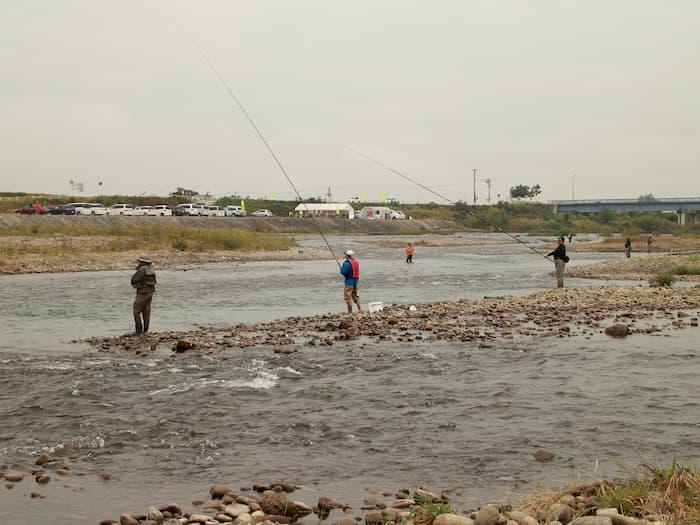 寒河江川の鮭有効利用調査